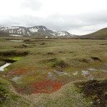 Laugavegur, jour 2 : De Hrafntinnusker à Álftavatn