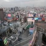 Jour 15 : Nakano, Shinjuku et retour en France
