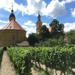 Une journée à Pezinok et Modra