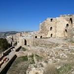 Visite de la forteresse de Kerak et des vestiges d'Umm er-Rasas (jour 9)