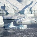 Croisière d'une semaine dans le Groenland : entre les icebergs et les aurores boréales, la nature sauvage